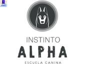 Instinto Alpha