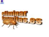 Abando eliminación de termitas