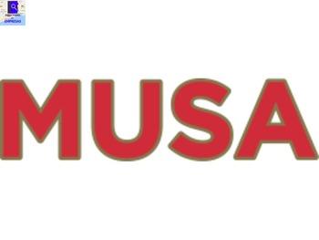 Auténtica Musa